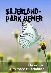 sauerlandpark.jpg